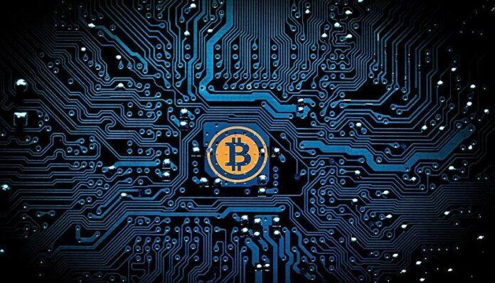 Bitcoin Wallet Safe