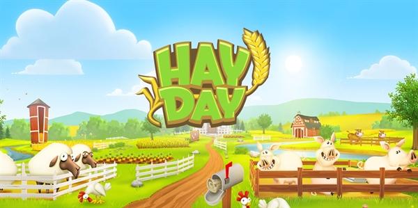 hay day neighborhood rules